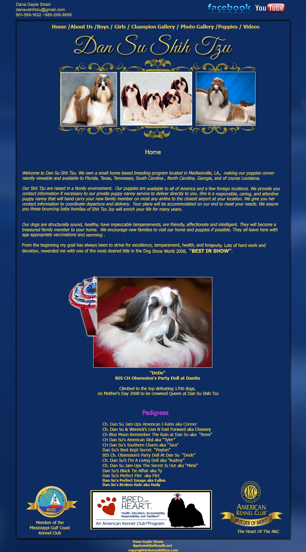 Shih Tzu Puppies Readily Available In Louisiana Texas Florida Shih Tzu Puppies Dan Su Shih Tzu Shih Tzu Breeder